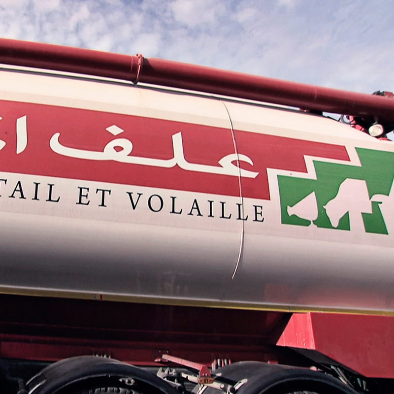 Animal feed transport truck with the Group's brand 'Alf Al Maghrib'